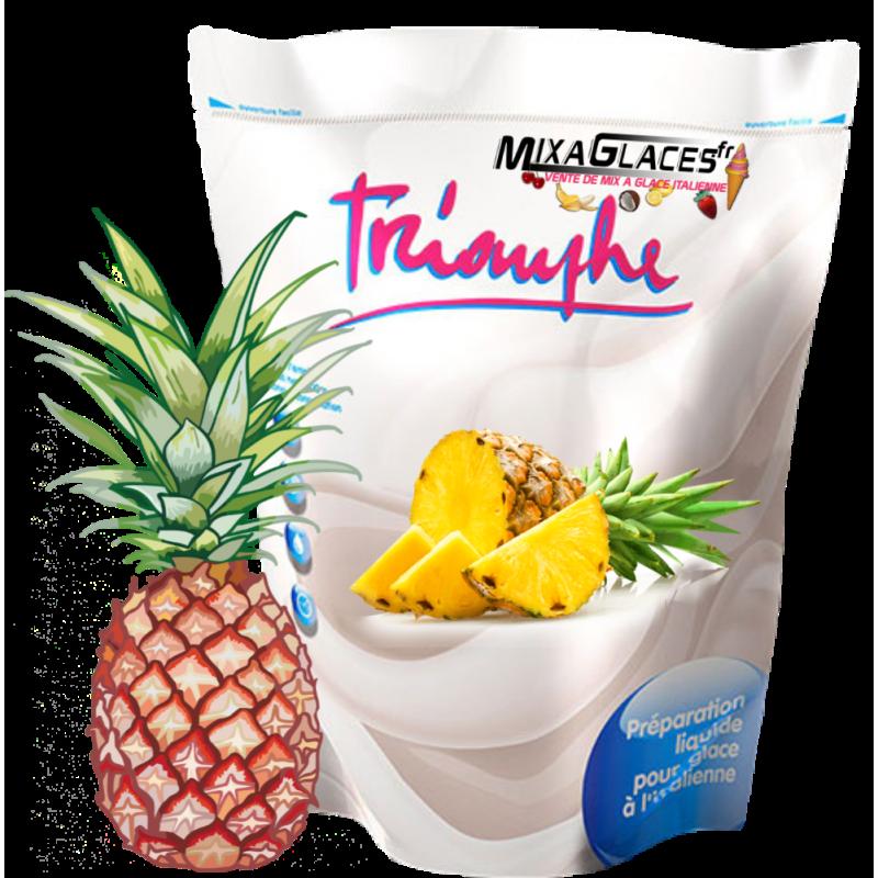 Mix à glaces Ananas