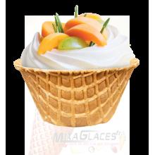 Coupe mousse abricot